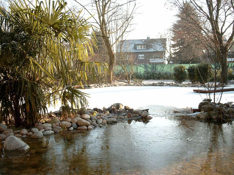 Schwimmteiche_08.jpg